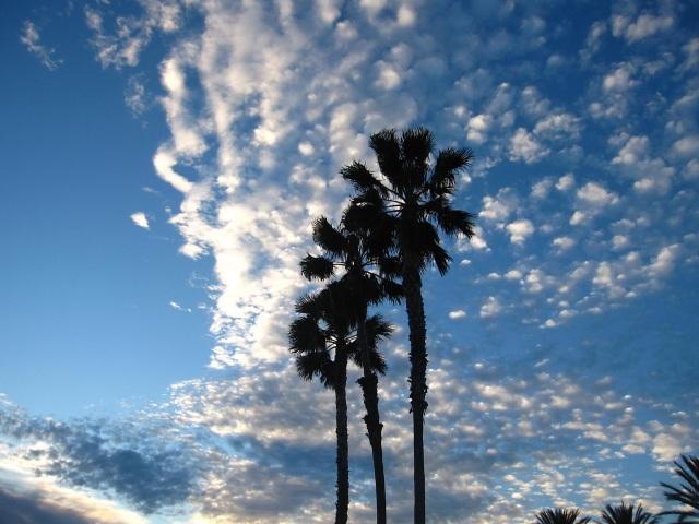 Wolken Conny 2