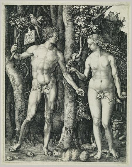 Edam & Eva Dürer